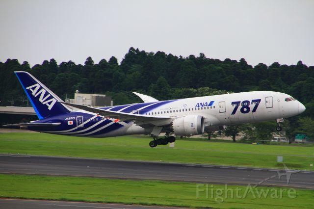 BOEING 767-300 (JA802A)