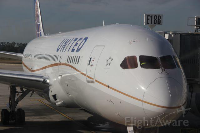 Boeing Dreamliner (Srs.8) (N26906)