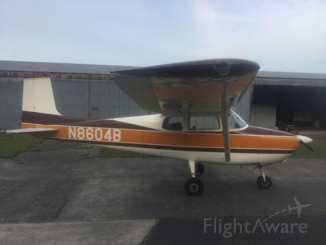 Cessna Skyhawk (N8604B)