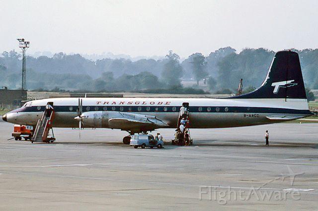 G-ANCC — - TRANSGLOBE AIRWAYS - BRISTOL 175 BRITANNIA 302 - REG : G-ANCC (CN 12919) - LONDON GATWICK UK - EGKK (17/9/1967)