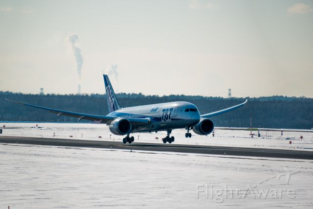BOEING 767-300 (JA817A)