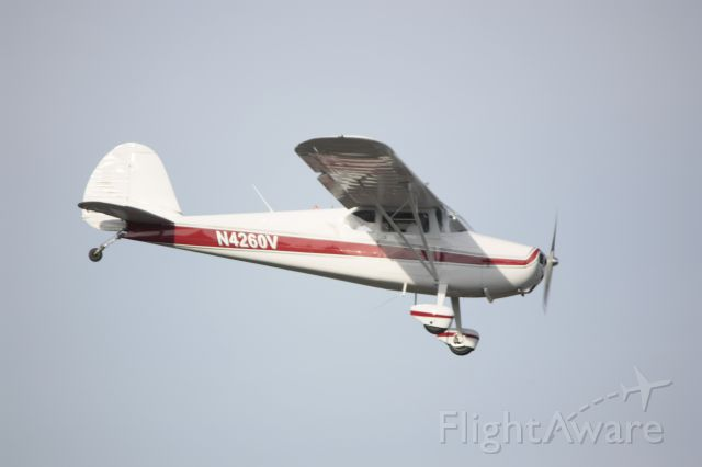 Cessna 170 (N4260V)