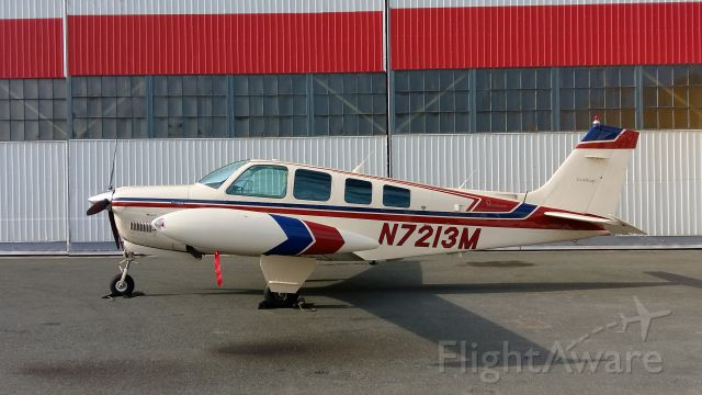 Beechcraft Bonanza (36) (N7213M)