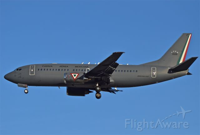 Boeing 737-700 (3529) - Mexican Air Force B737-33A, 502 squadron landing in 05R runway on Mexico City airport.
