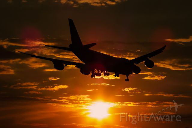 """BOEING 747-8 (LX-VCL) - The QUEEN OF SKY landing in summer sunset at Liszt Ferenc International Airport, Budapest. My personal page <a rel=""""nofollow"""" href=""""http://www.facebook.com/mbruscha/"""">https://www.facebook.com/mbruscha/</a>"""