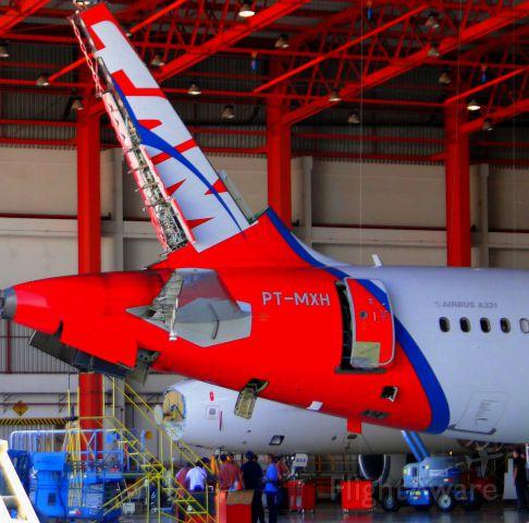 Airbus A321 (PT-MXH) - AIRBUS A321 Maintenance in Hangar TAM, São Carlos-SP, Brazil.