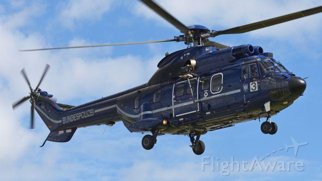 TUSAS Cougar (D-HEGW) - Eurocopter AS-332L1 Super Puma