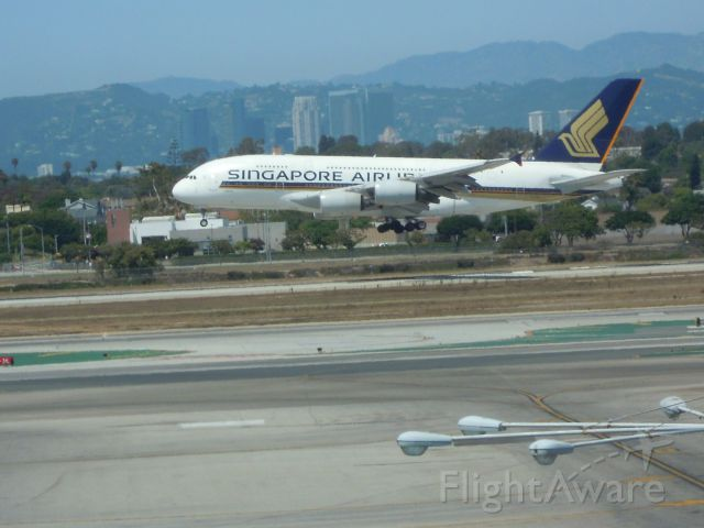 Airbus A380-800 — - SINGAPORE AIRLINERS A380-861 LAX