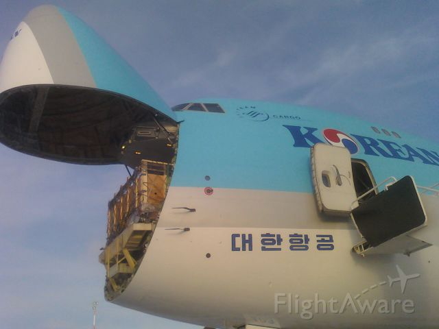 Boeing 747-200 — - Korean Air in the process of loading cattle destined for Brussels.