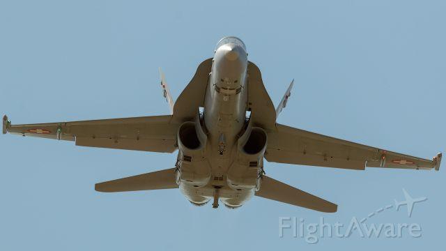 McDonnell Douglas FA-18 Hornet (J005) - 21.09.2019 NATO days , Ostrava , Czech Republic.