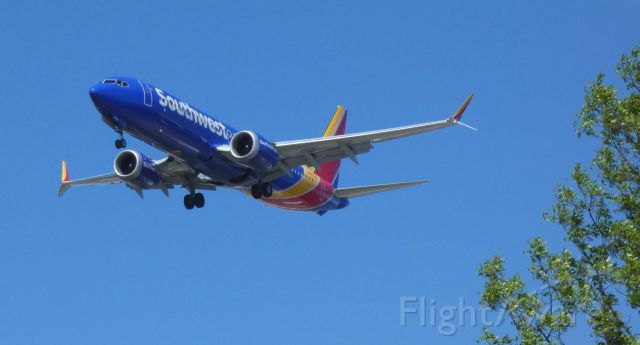 Boeing 737-800 (N8723Q) - On final is this 2018 Southwest Airlines Boeing 737-8 in the Spring of 2021.