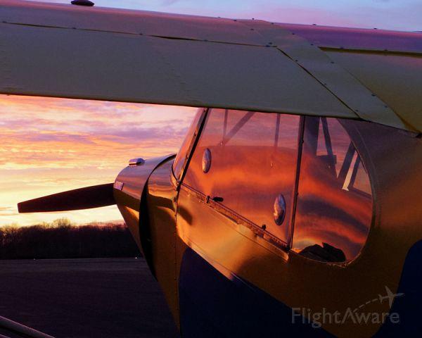 Piper L-21 Super Cub (N4950M) - Piper PA-18 Super Cub (N4950M)