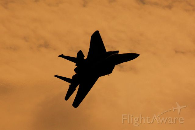 F15 — - 2008 Alliance Air Show br /Ft. Worth, Texas