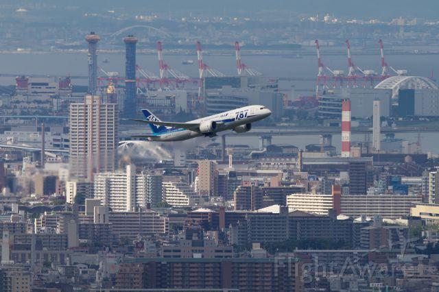 Boeing Dreamliner (Srs.8) (JA811A)