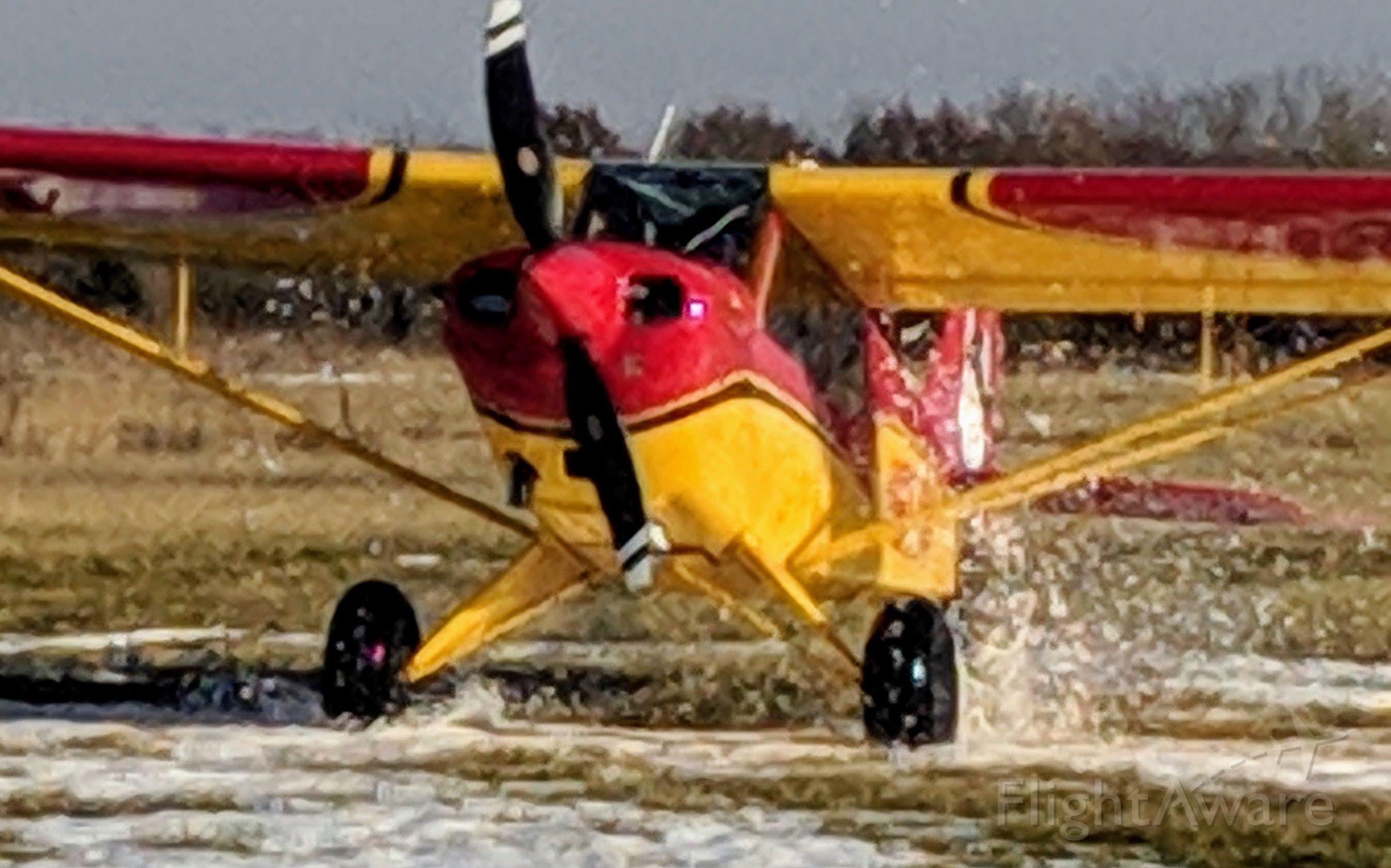 CHRISTEN Husky (N617M) - Husky making a snow landing on grass