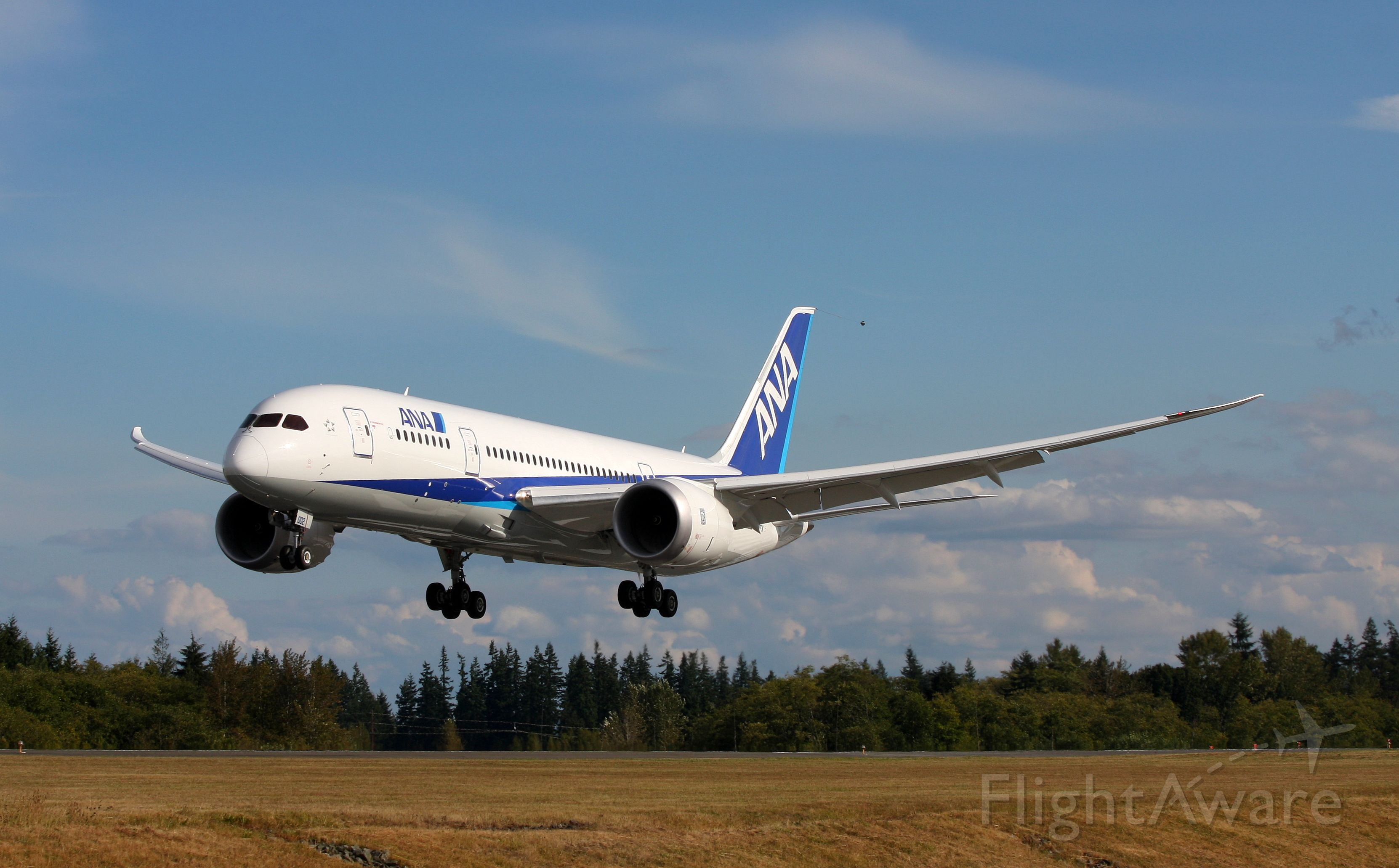 Boeing 787-8 (N787EX) - ANA 787-800 Landing at Paine Field after a test flight.