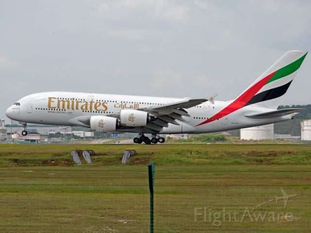 Airbus A380-800 (A6-EUP) - Big Mommy Coming up!
