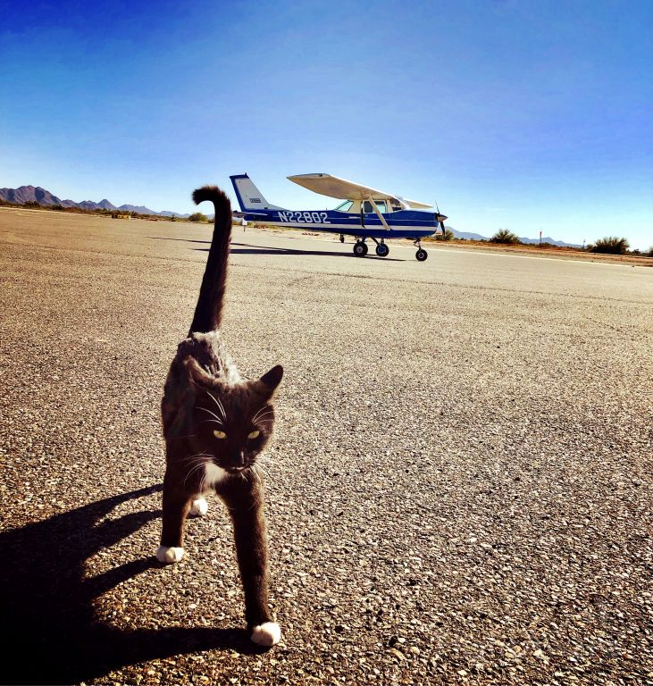 Cessna Commuter (N22802) - Making friends along the way