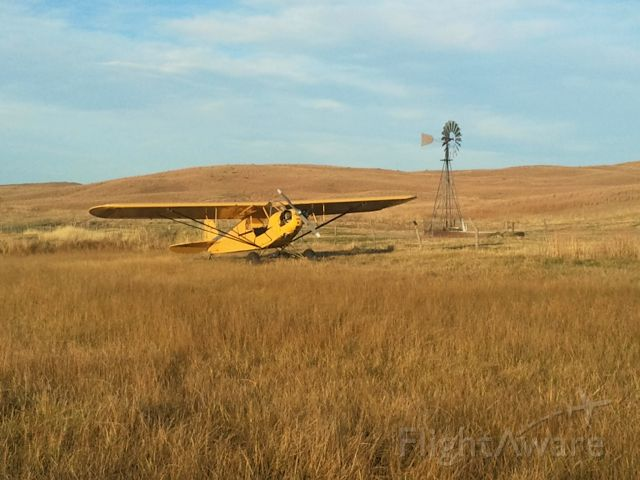 N6522H — - Out checking pastures.