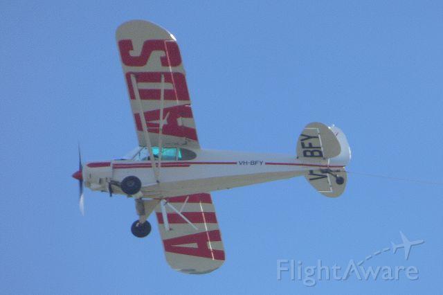 Piper L-21 Super Cub (VH-BFY)