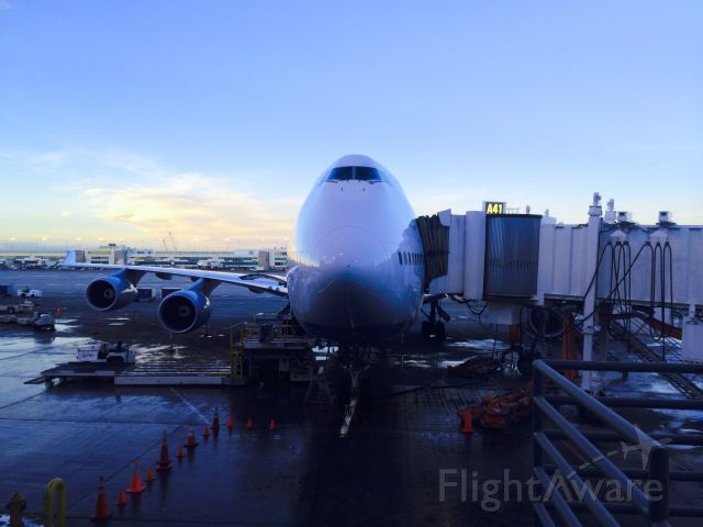 Boeing 747-400 (D-ABVY) - Lufthansa parked next to us in Denver. Such a huge plane!