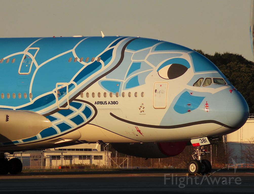 Airbus A380-800 (JA381A) - I took this picture on Nov 04, 2020.