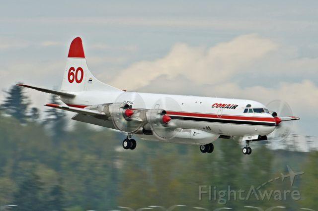 Lockheed L-188 Electra (C-FYYJ)