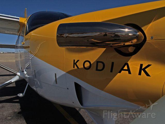 Quest Kodiak — - Quest KODIAK w/ TKS