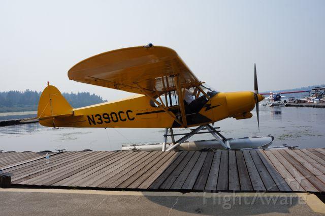 Piper L-21 Super Cub (N390CC)