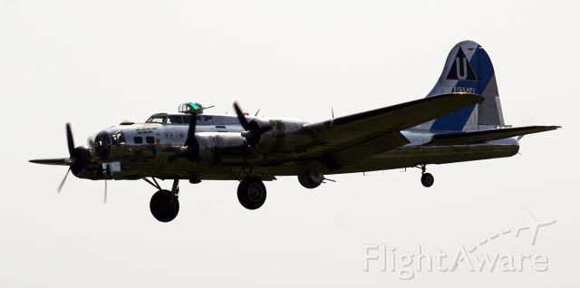 Boeing B-17 Flying Fortress — - CAFs Boeing B17, Sentimental Journey, coming in over the fence at Albany on August 26