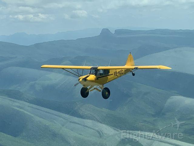 Piper L-21 Super Cub (XB-KCO)