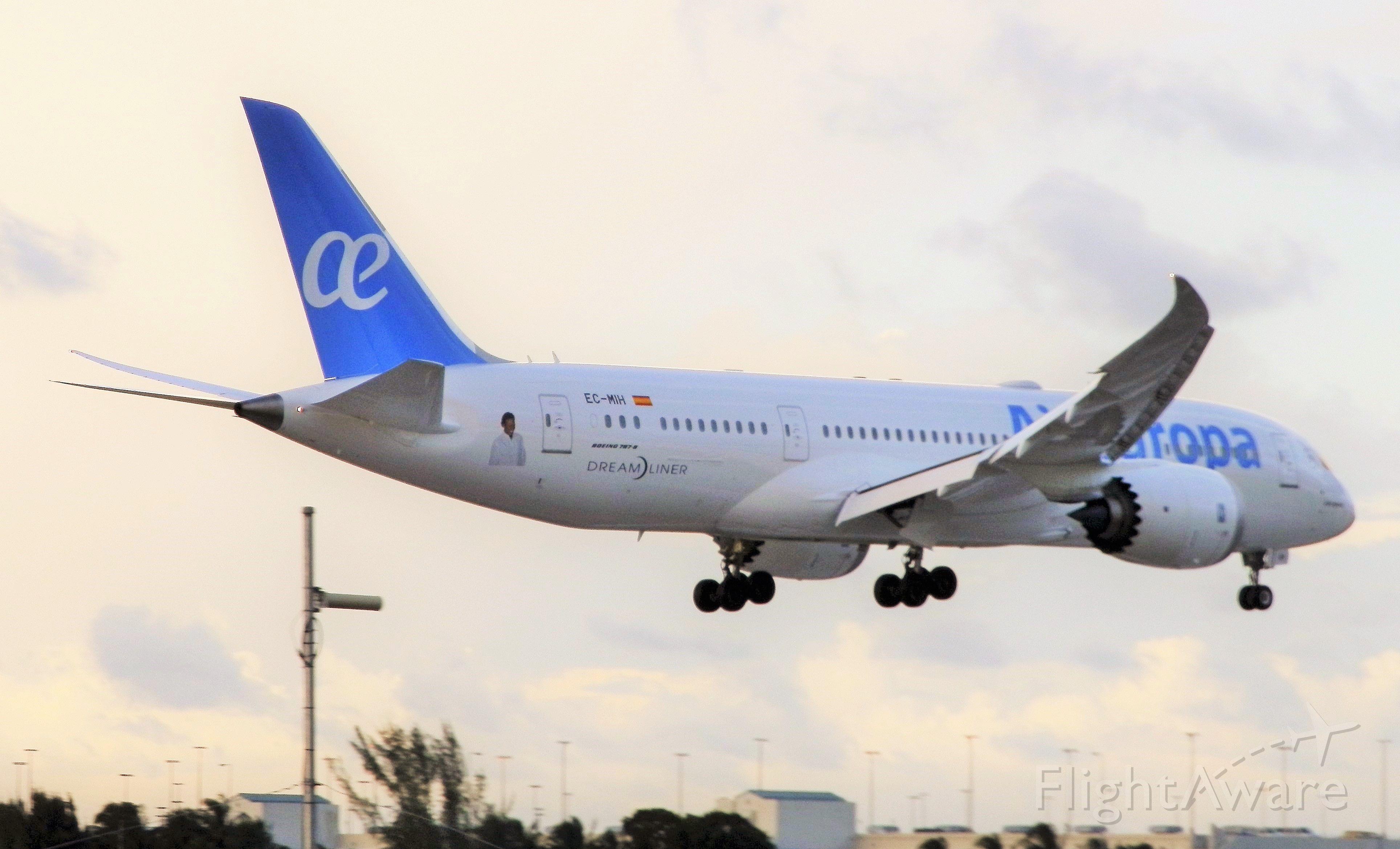 Boeing 787-8 (EC-MIH)