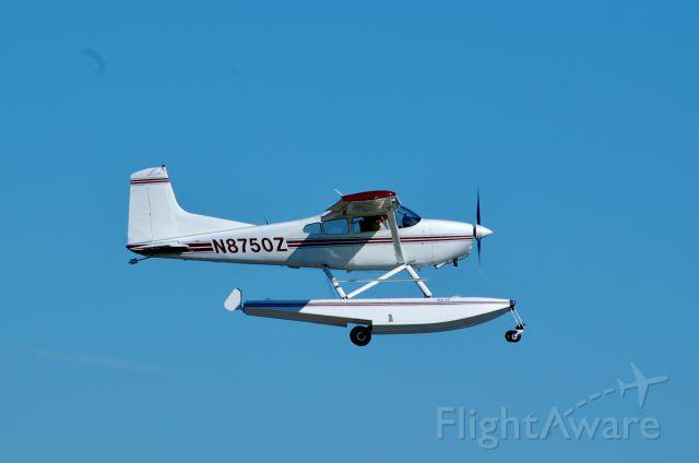 Cessna Skywagon (N850Z)