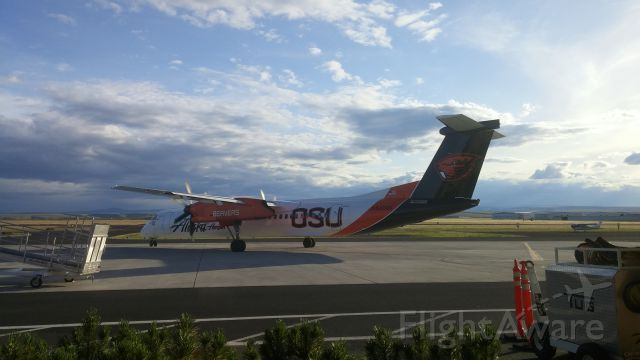 de Havilland Dash 8-400 (N440QX) - Up close and personal with Horizon Air