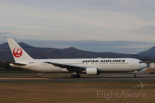 BOEING 767-300 (JA659J) - November 11th 2019:HKD-HND.