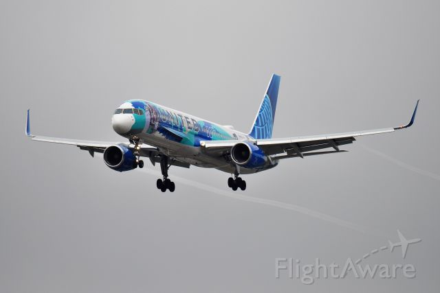 Boeing 757-200 (N14102) - ART HER WAY SLIDING DOWN FINAL THROUGH THE MUCK