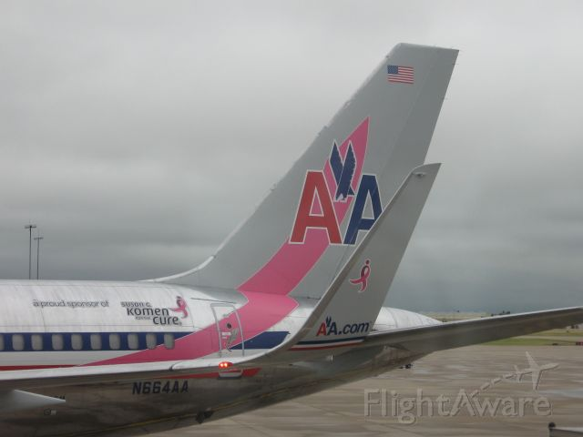 "Boeing 757-200 (N664AA) - Inaugural flight of Susan G Komen ""Race for the Cure"" 757.  AA1085 KTUK-KDFW"