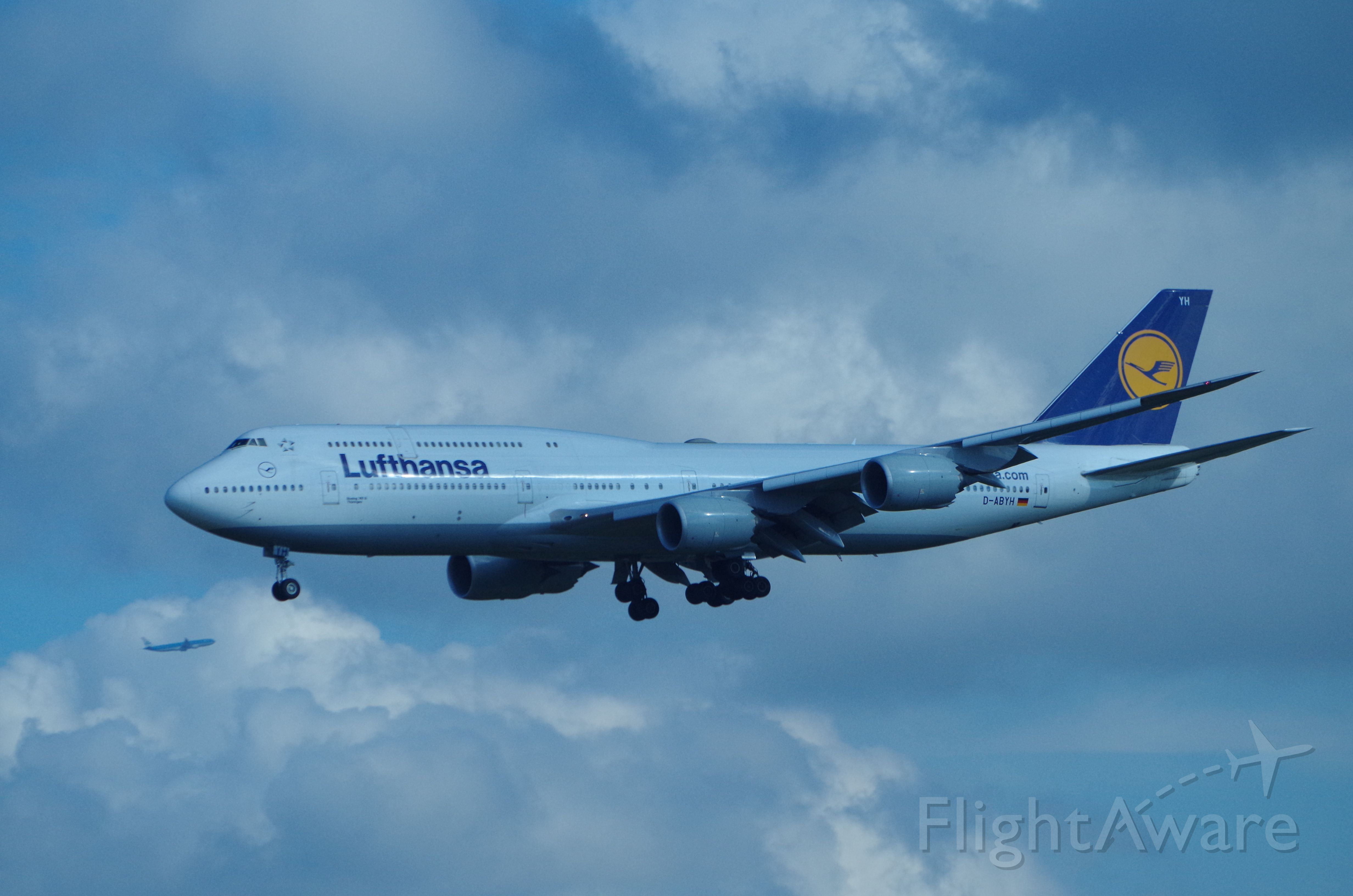 BOEING 747-8 (D-ABYH) - Arriving form Frankfurt.