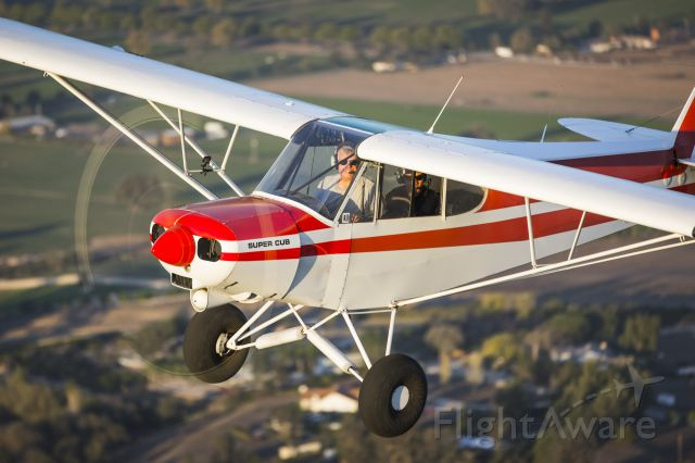 Piper L-21 Super Cub (N82505)