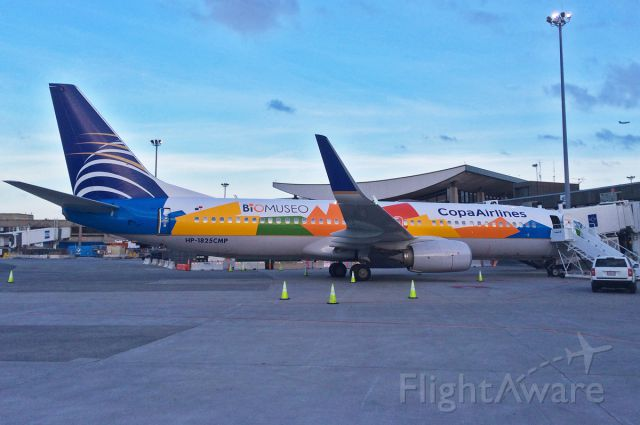Boeing 737-700 (HP1825CMP) - BIOMUSEO Special !