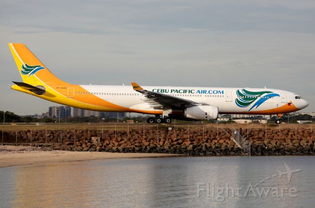 Airbus A330-300 (RP-C3344) - The Original Livery reflects nicely,heading for Rwy 34L