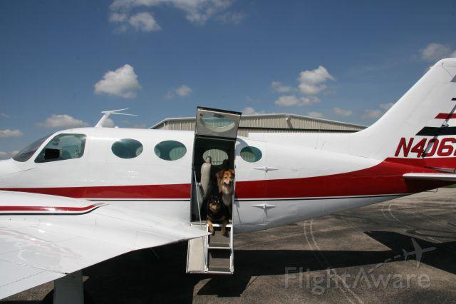 Cessna 402 (N4062Q) - Bella & Beau