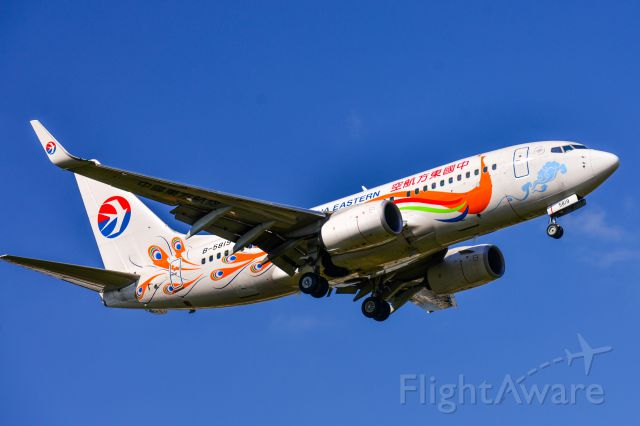 Boeing 737-800 (B-5819)