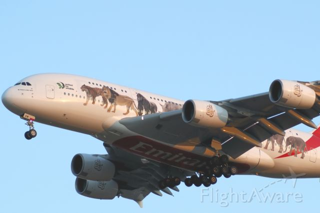 Airbus A380-800 (A6-EOM) - EK A388 A6-EOM United for wildlife livery