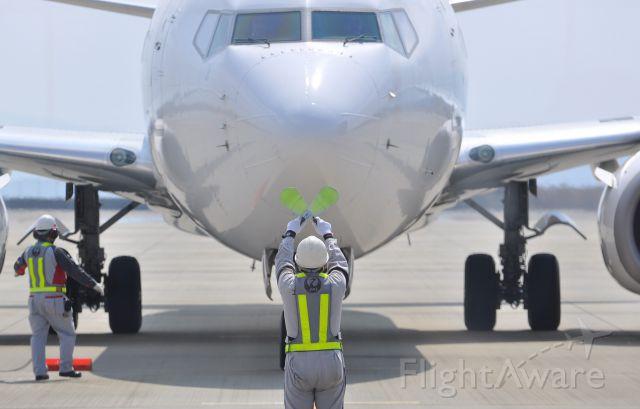 Boeing 737-800 (JA333J)