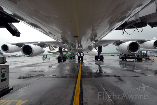 Airbus A340-300 — - While doing the walk around
