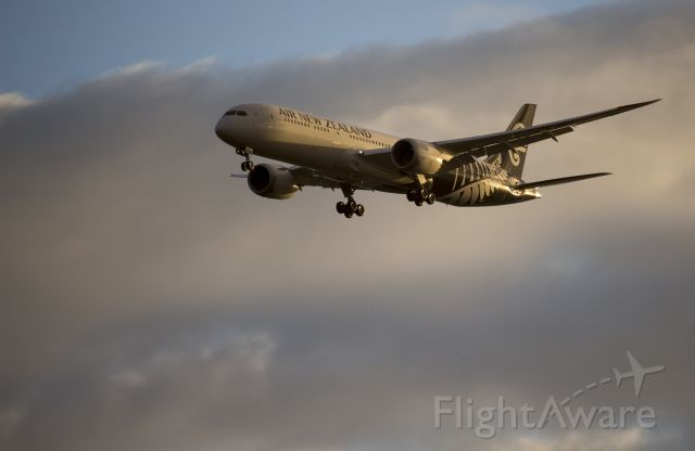 Boeing Dreamliner (Srs.8) (ZK-NZH) - Early morning arrival of NZ5
