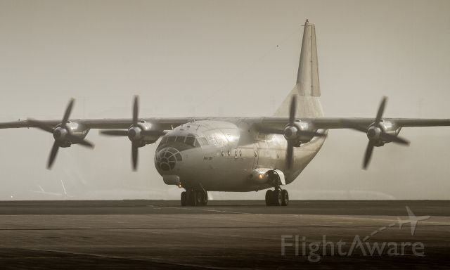 Antonov An-12 (UR-CKM) - The An12BP makes her way to the cargo ramp in the backlit fog