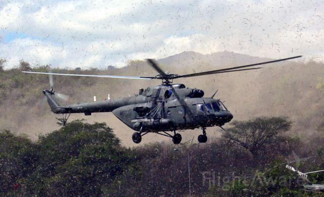 — — - Venezuelan Army