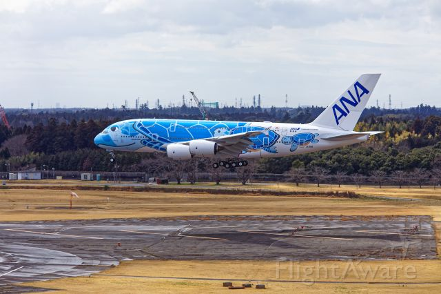 Airbus A380-800 (JA381A) - It was FLYING HONU's(JA381A-Airbus A380-841-All Nippon Airways-) first touchdown at Narita International Airport.